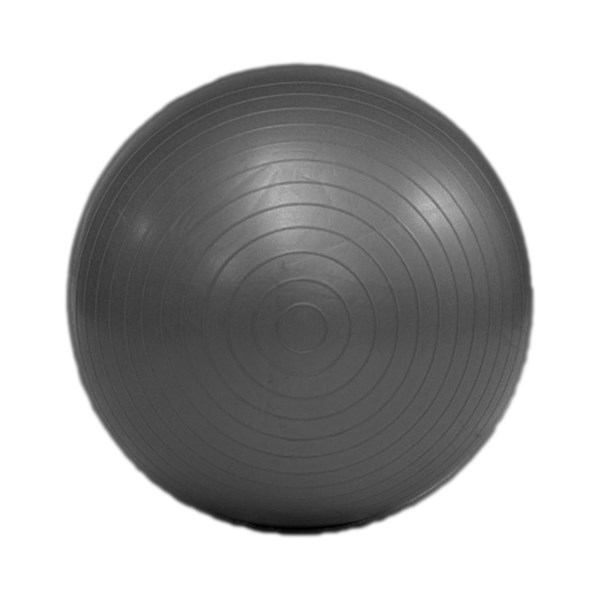YOGISAN Pilates und Gymnastikball platzsicher Ø 55 cm